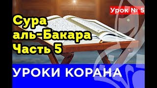 5. КОРАН-ОНЛАЙН. Сура аль-Бакара. Часть 5