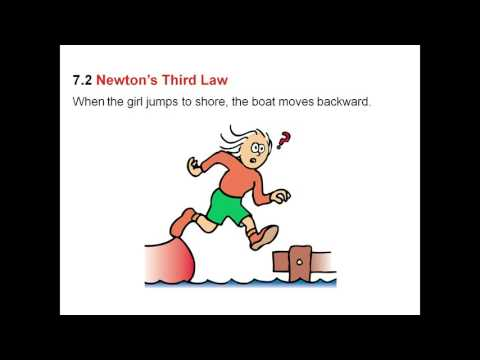 Newton's Third Law of Motion Action   Reaction