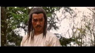 Cantonen iron kung fu - Final
