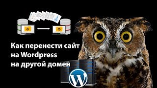 видео Перенос сайта на wordpress на другой домен