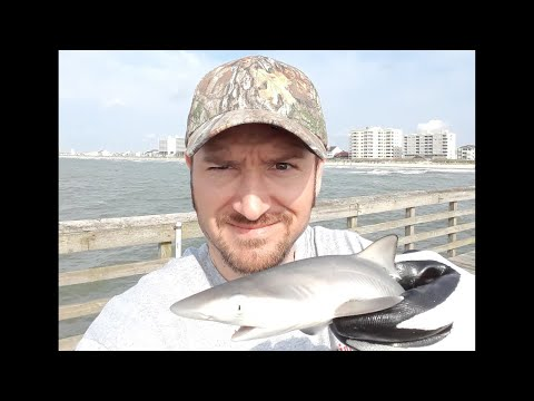 How To Catch Fish On A Pier. North Myrtle Beach.