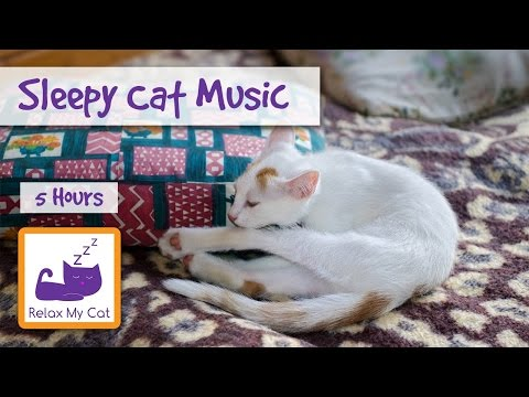 Extra Long Cat Video! Sleep Music for Cats and Kittens – 5 HOURS!