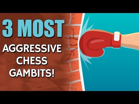 3 Most Aggressive Chess Gambits 👿 with GM Damian Lemos