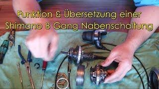 shimano nexus 8 gang alfine 8 gang service funktion. Black Bedroom Furniture Sets. Home Design Ideas