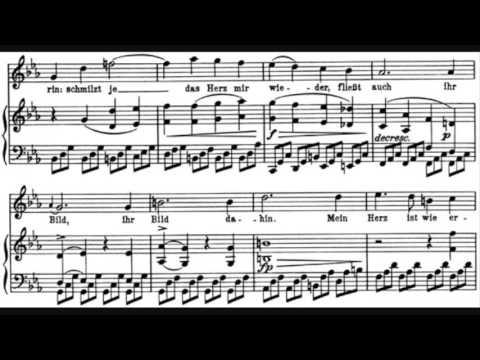 Franz Schubert - Winterreise mp3