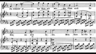 Play Schubert Winterreise, Op. 89, D. 911 No. 21, Das Wirtshaus