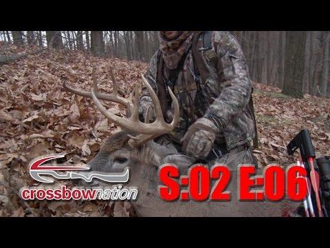 15 Point Buck Crossbow Hunt