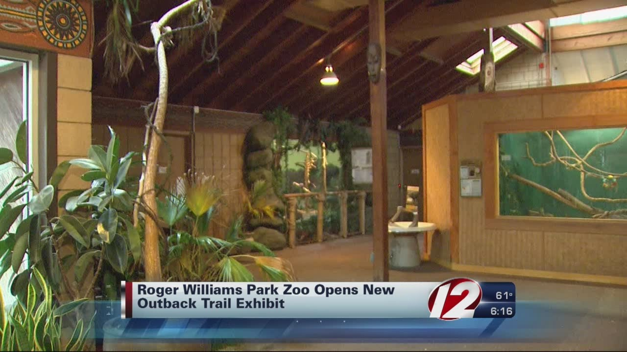 Roger Williams Zoo opens new outback trail exhibit - YouTube