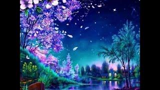 Волшебная музыка ночи. Music Sergey Chekalin Magic Music night.