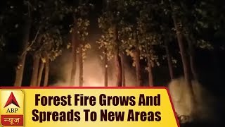 Uttarakhand: Forest Fire Grows And Spreads To New Areas | ABP News