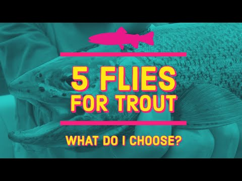 Flies For Trout Fishing | Euro Nymphing For Trout | My Confidence Flies