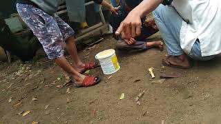 Download Video Viral, Anak di Bawah umur Mabuk BUAH KECUBUNG, Begini EFEKNYA.. MP3 3GP MP4
