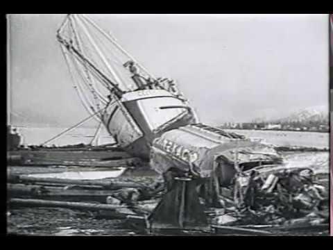 1994年北海道東方沖地震 Hawaii ...
