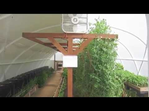 Geothermal Greenhouse: It worked. It REALLY Worked!