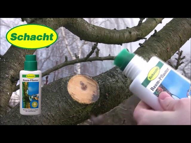 Baumwunden natürlich verschließen - Baum-Pflaster in der praktischen Pinselflasche