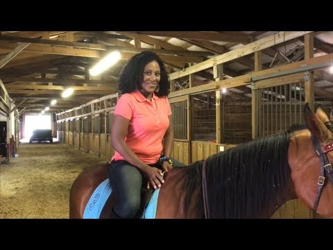 """The Dominion Series (One Minute Challenge!) """"The Horses!"""" Series 9 - Sabina"""
