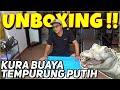 Unboxing Monster Penghuni Rawa Galak Gak Ada Obat  Mp3 - Mp4 Download
