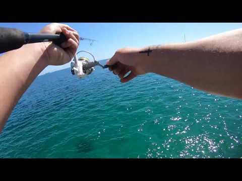 Squid Fishing Rye & Sorento
