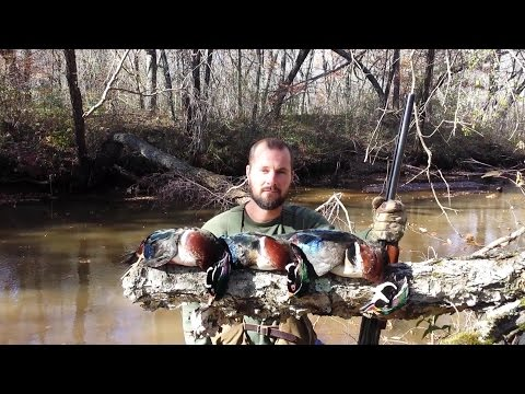 (HD) Wood Duck Hunting 2015 Round 2