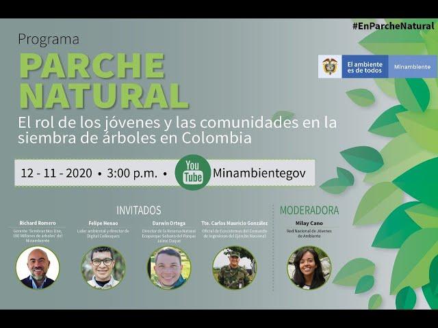 El rol de los jóvenes en las siembras de árboles en Colombia