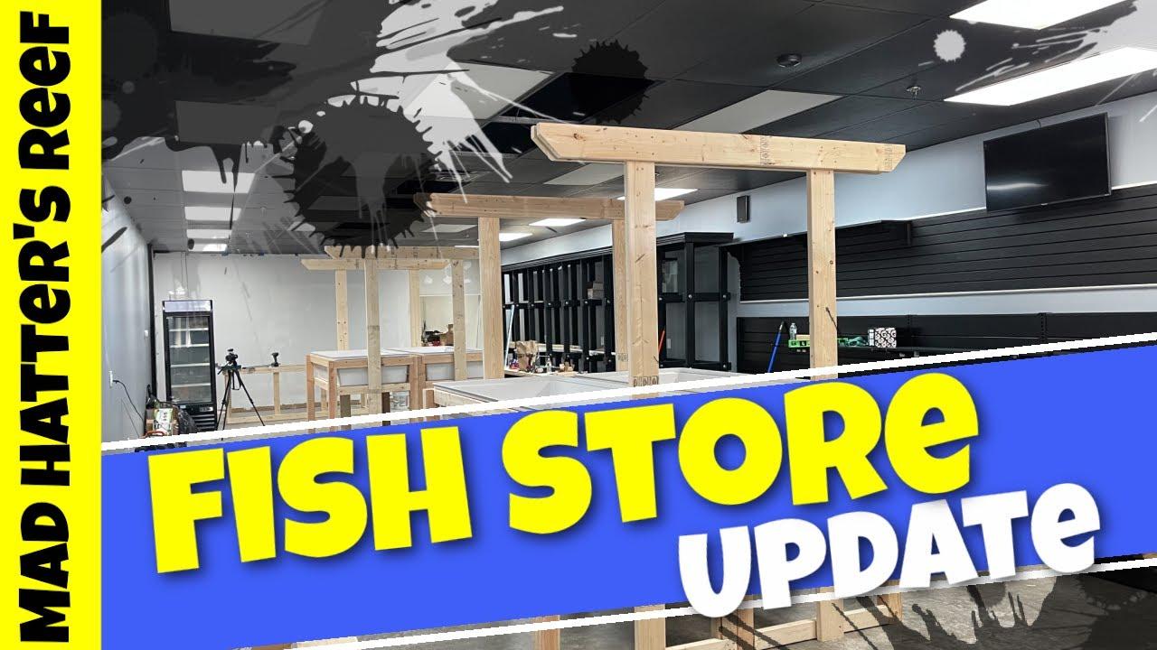 Fish Store Update | One Take Sunday