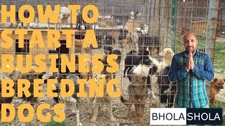 Pet Care - How to Start a Business Breeding Dogs - Bhola Shola thumbnail