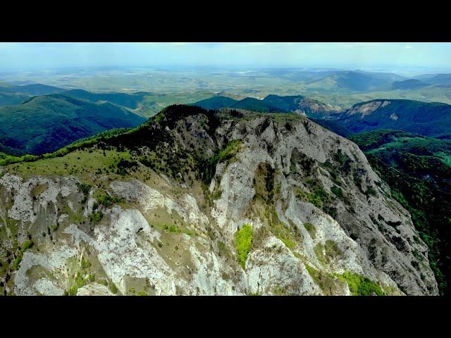 Pe Cărări Pierdute - Rezervaţia Naturală Scăriţa Belioara