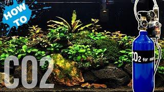 How to set up Aquarium CO2 - Pressurised CO2 set up