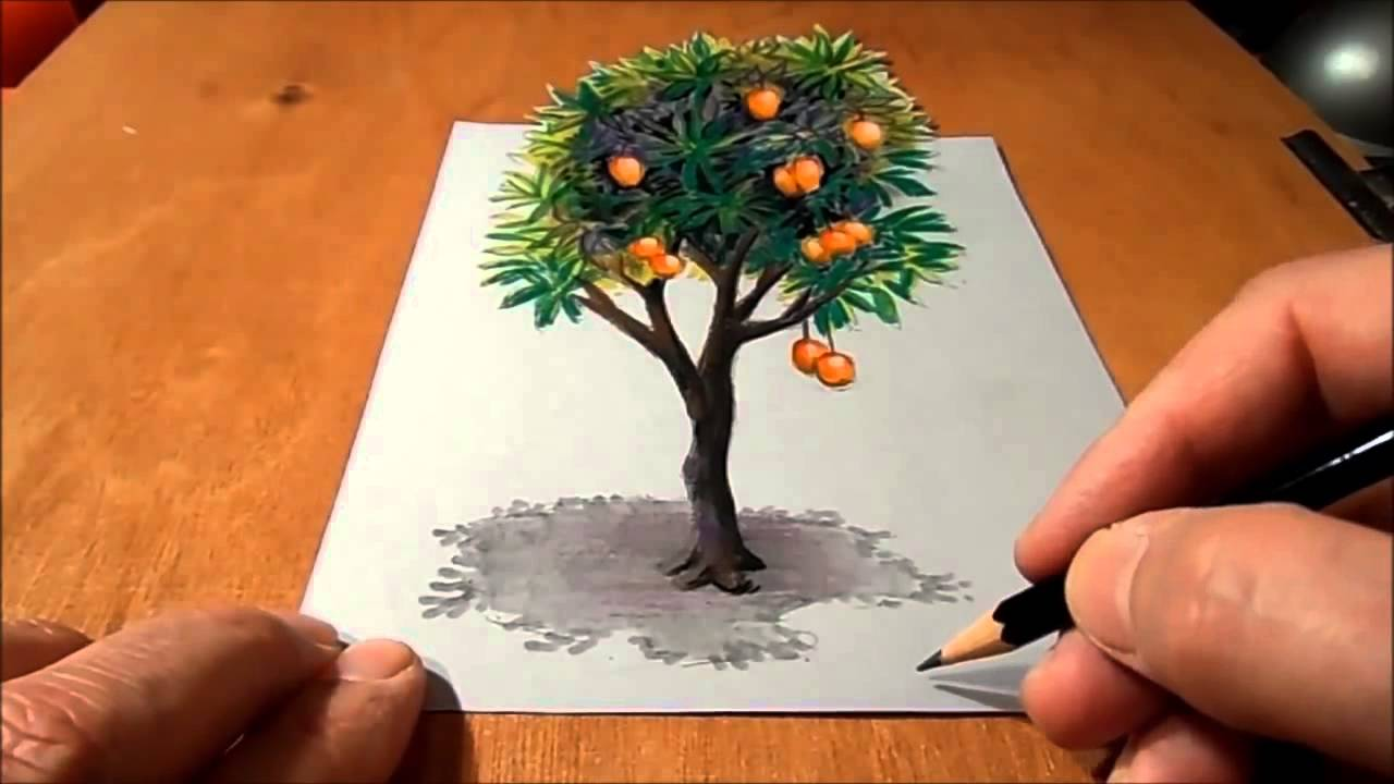 Mango Tree Drawing Pictures