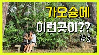 [대만]가오슝 자유여행/총경비 22만원 (용호탑,삼우우…