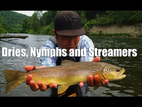 """W4F - Fly Fishing """"Dries, Nymphs and Streamers"""" West Branch Delaware River"""