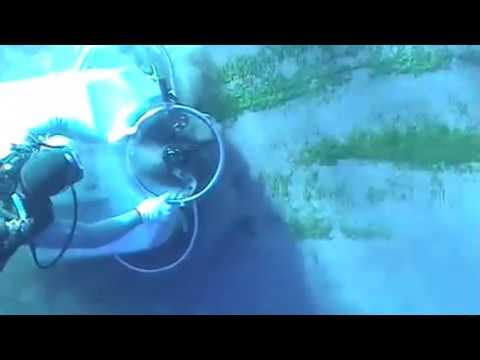 Hull Cleaning using Brush Kart