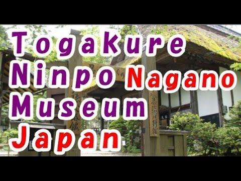 Japan Trip: Togakure Ninpo Museum great fun for family, Nagano33 Moopon