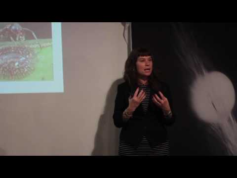 Elective Studies Supper Club - Vol. 7 with Corrie Moreau