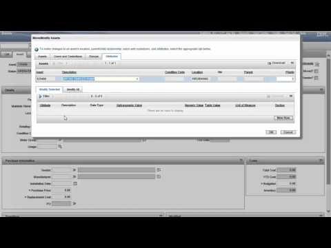 Maximo 7.5 Assets: Move /Modify