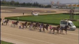 Vidéo de la course PMU PREMI ARCHI LLINARITX
