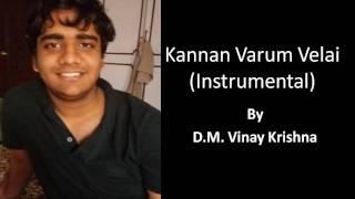 kannan varum velai instrumental by D.M. Vinay Krishna