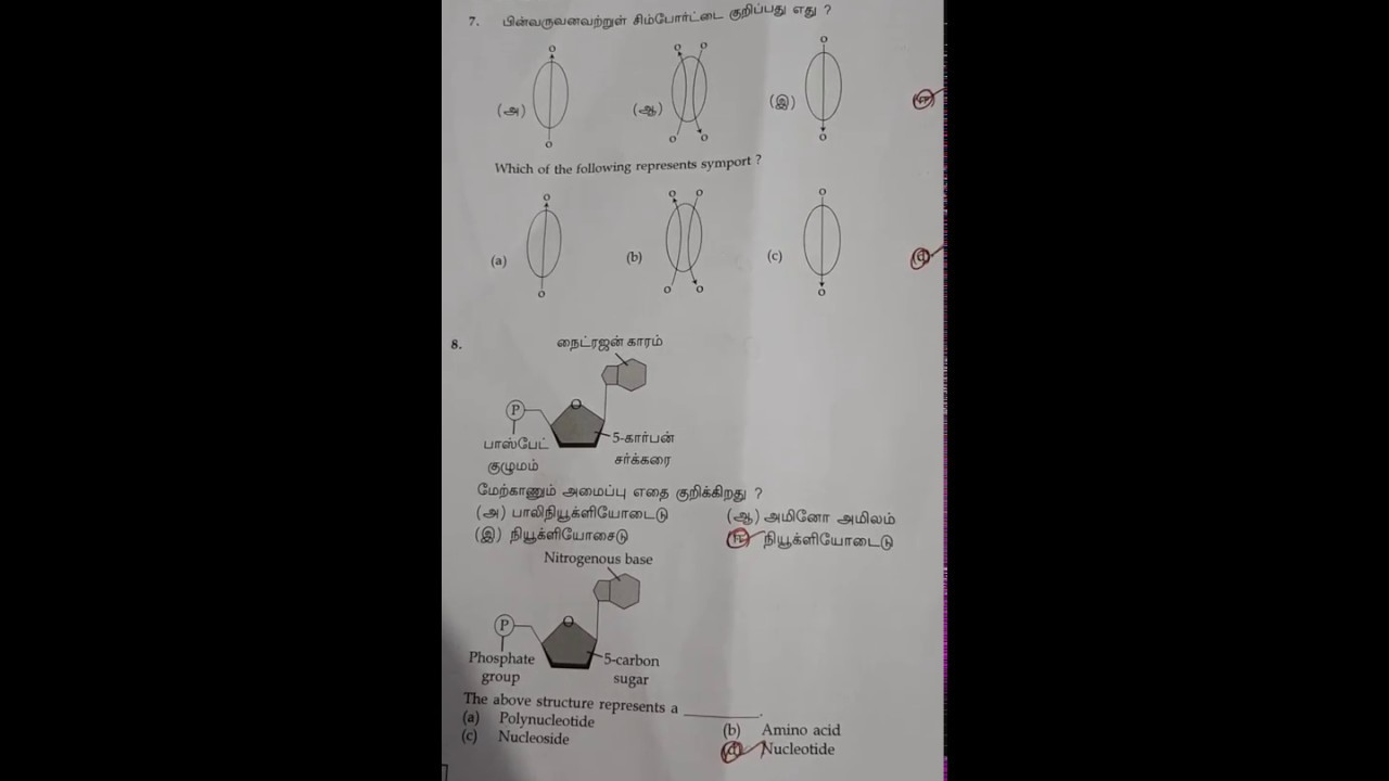 11th Biology answer key March 2019 - YouTube