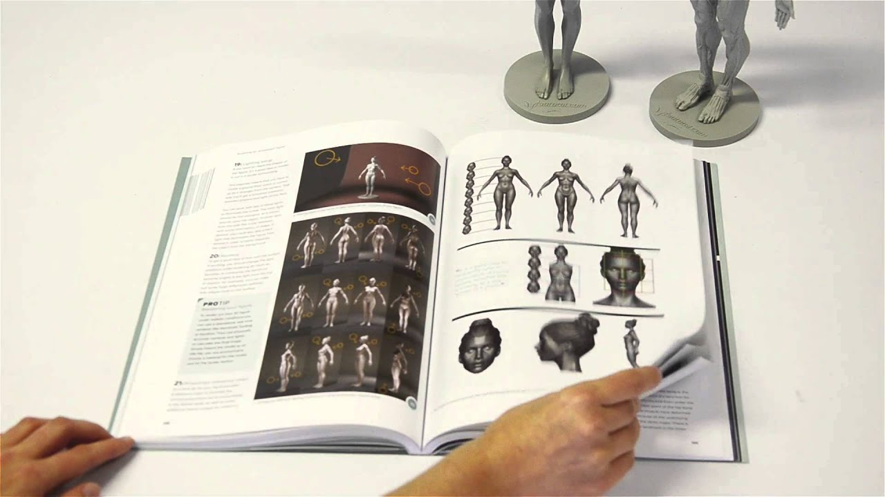 Anatomy For 3d Artists Flick Through Youtube