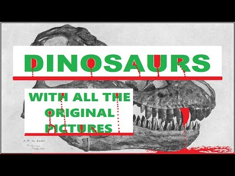AUDIOBOOK - DINOSAURS (With The Original Pictures) - 1915
