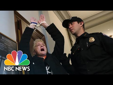 Protesters Outside Mitch McConnell's Office Demand End To Shutdown | NBC News