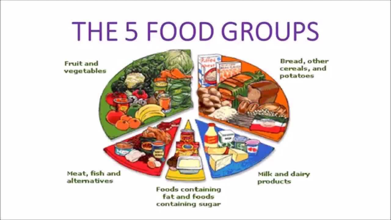 Image result for five food groups