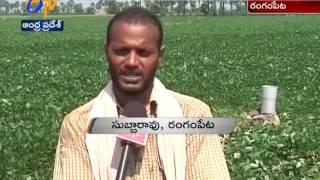 NTR Jala Siri Scheme Not Reaching to East Godavari Farmers: A Report