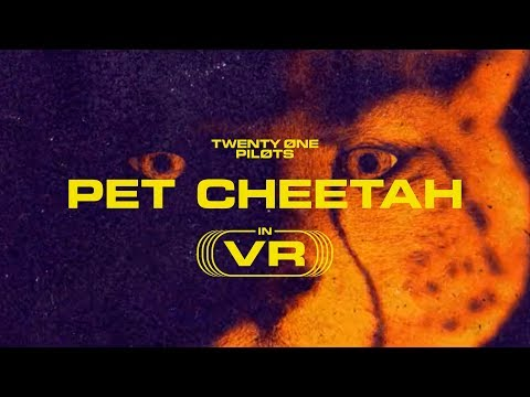 Cole Selleck - Twenty One Pilots Pet Cheetah Video