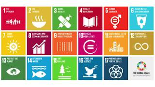 UN Sustainable Development Goals (SDGs): What They Are & Why They're Important