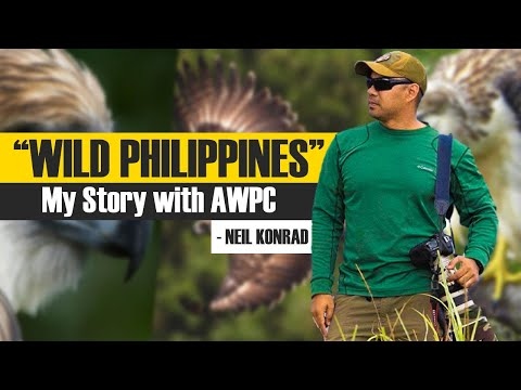 """WILD PHILIPPINES"" - The journey of a wildlife photographer"