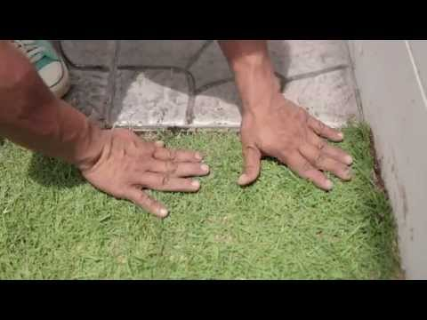 เปลี่ยนมุมเปล่าเป็นมุมโปรด ตอน แต่งสวนข้างบ้านด้วยกระเบื้องปูพื้น เอสซีจี