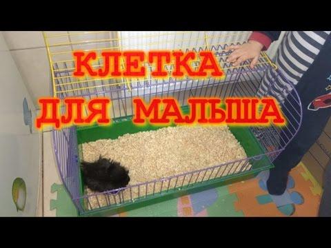 Как наполнить клетку для грызунов. клетка для морской свинки/How to fill the cage for rodents.