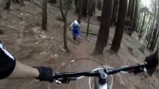 UCSC MTB Freeride Trail Santa Cruz