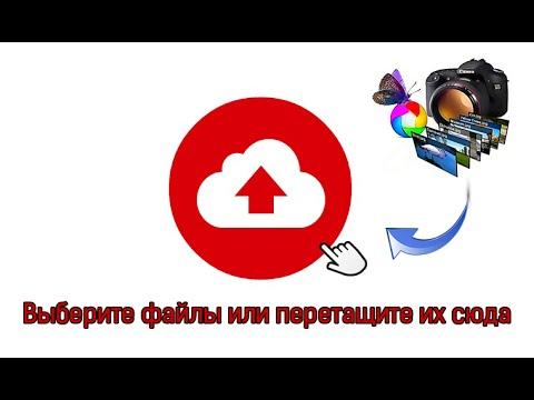 Хранение данных в интернете, облачное хранилище Mega - 50 Гб бесплатно